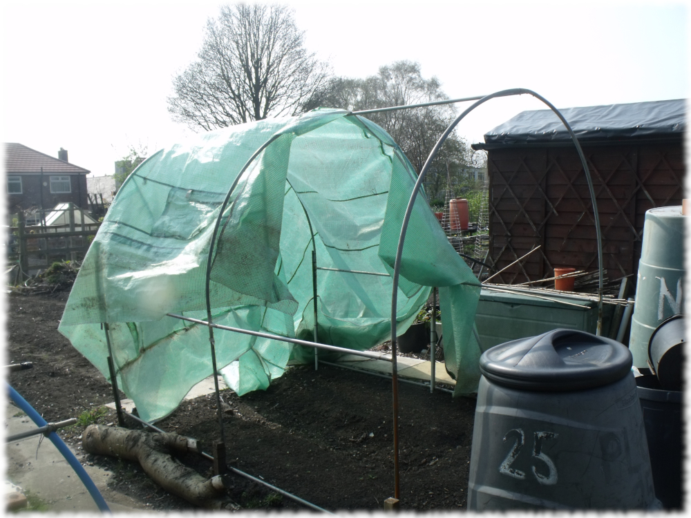 All But Sorted With Our Tunnel Cover