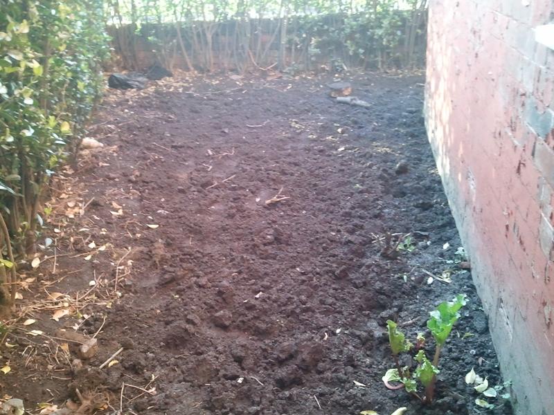 Side of Garden Turned Over.