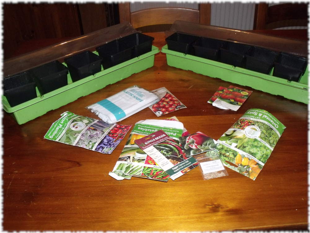 Seeds To Be Sorted & Sown @ Daft O'clock