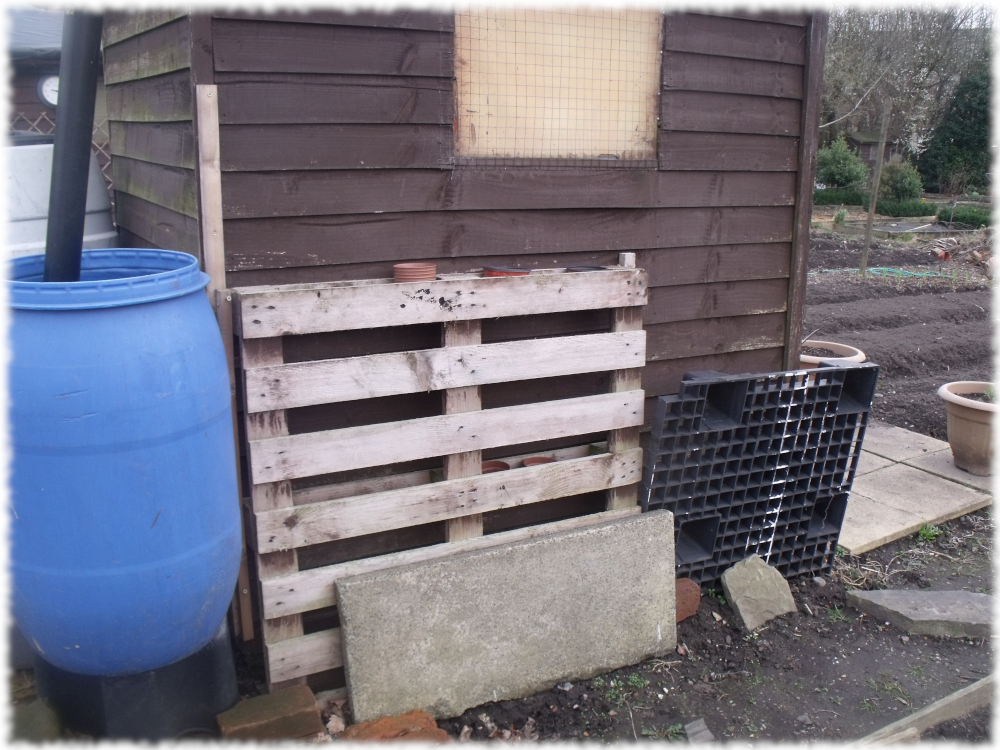 Pallet For Strawberries