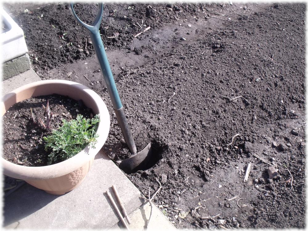 Dig A Hole ...