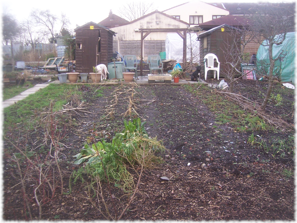 Our 2nd plot, again, not touched at all