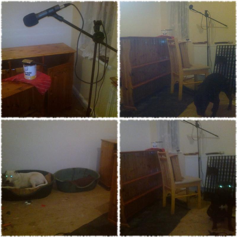Audio Testing DIY Varnishing