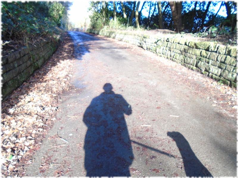 Me & Me Shadow