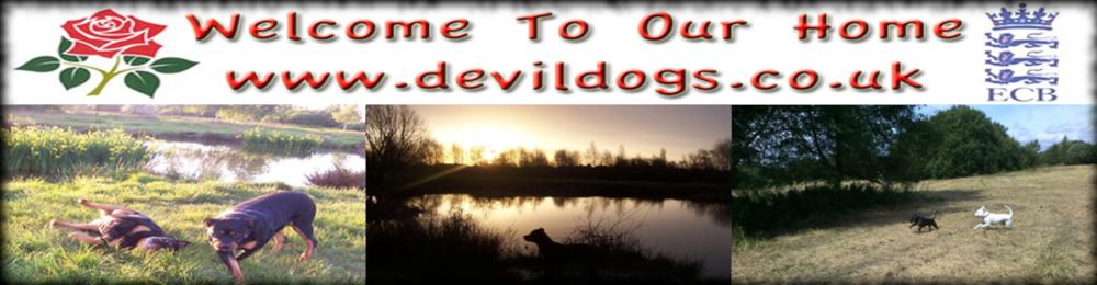 Devildogs - Links Page